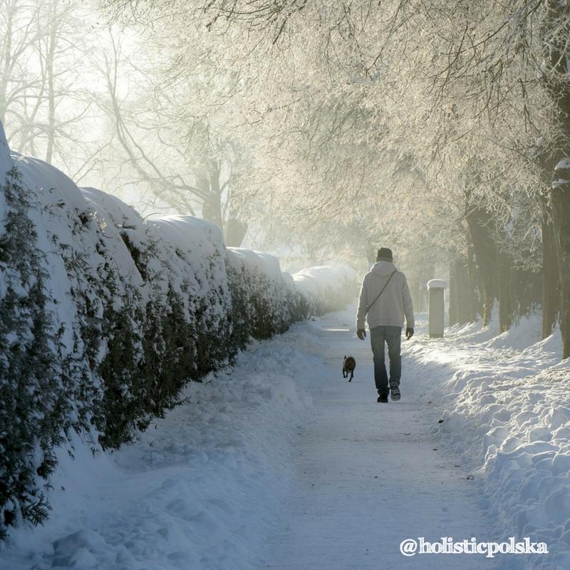 Zimowe vademecum żywieniowe – porady dietetyka