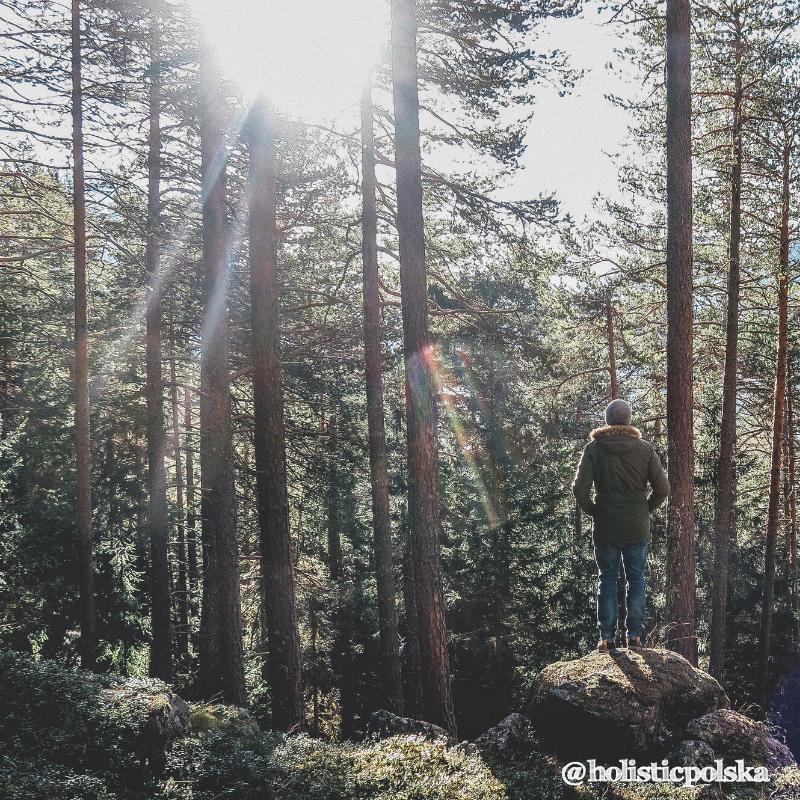 Kojący wpływ natury – w jaki sposób nasz organizm reaguje na otoczenie