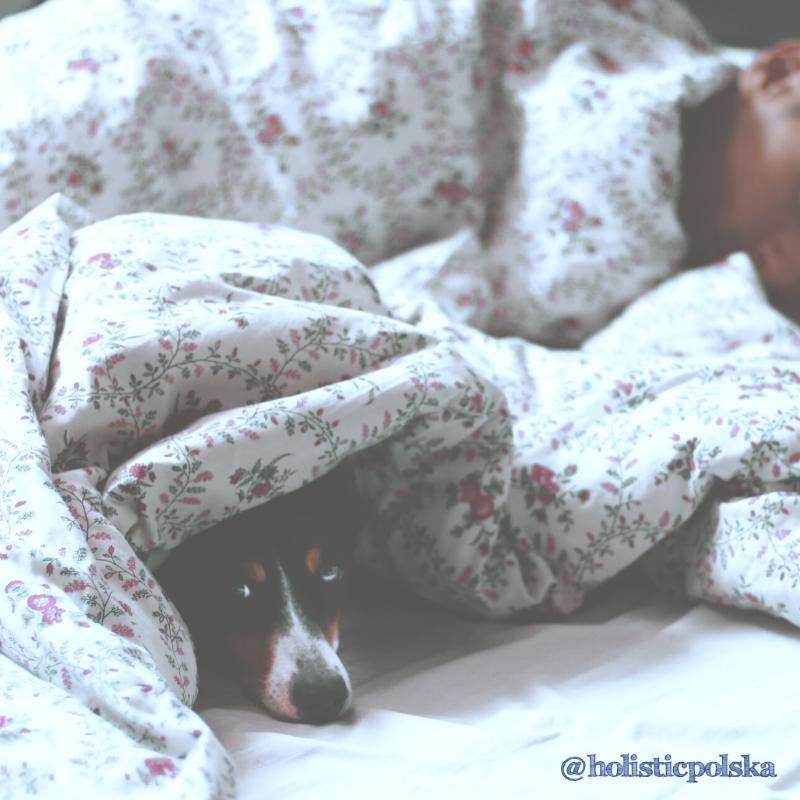 Jak holistycznie wspierać zdrowy sen. Daria Łukowska, dietetyk kliniczny, trener personalna