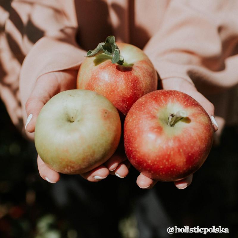 Gdzie znajdziemy mnóstwo pożytecznych bakterii? W jabłkach!