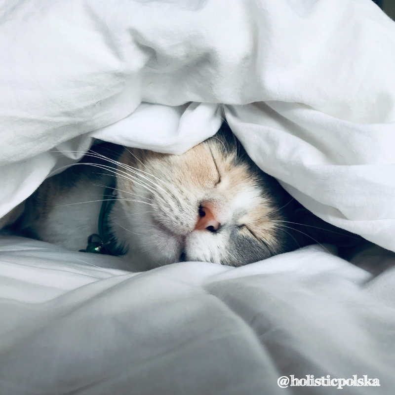 Ważne jest, aby się wysypiać przez cały tydzień!